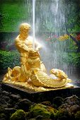 PETERHOF, RUSSIA  Samson - the central fountain