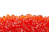 Red Caviar Isolated Over White
