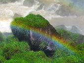 Rainbow at the Iguazu Falls