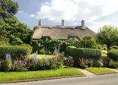 stock photo of english cottage garden  - Charming ancient  - JPG