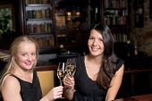 Two Beautiful Women Toasting Each Other