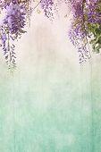 Romantic wisteria background