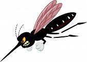 Angry mosquito cartoon