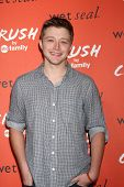 LOS ANGELES - NOV 5:  Sterling Knight at the CRUSH by ABC Family Clothing Line Launch at London Hotel on November 5, 2013 in West Hollywood, CA