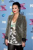 LOS ANGELES - NOV 4:  Demi Lovato at the 2013