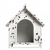 Dog kennel, isolated on white