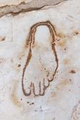 Footprint On Marble For Advertisement Of The Brothel In Ephesus, Turkey