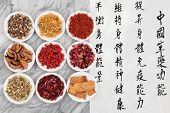 Traditional chinese herbal medicine with mandarin script calligraphy.  Translation describes the fun