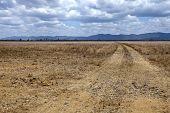 Rural QLD