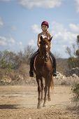 Teenage Rider On Horse