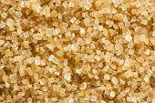 Raw Organic Cane Sugar