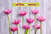 Beautiful flowers on color wooden background