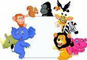 pic of chimp  - Vector illustration of Cartoon wild animal holding blank sign - JPG