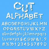 Paper alphabet with cut letters