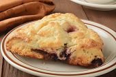 Berry Turnover