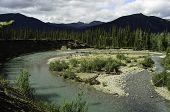 Natrually wild Alaska