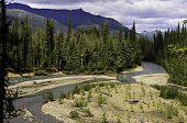 Natural Alaskan wilderness
