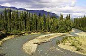 Natural river bend