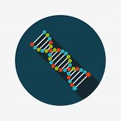 Dna Flat Icon With Long Shadow