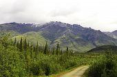 Alaska roads