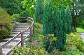Cozy Park With Stairs And Shrubs