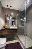 Modern Luxury Bathroom With Shower