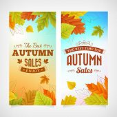 Set Autumn Sales Business Banners