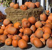 Display of Pumpkins