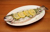 fresh rainbow trout with spices