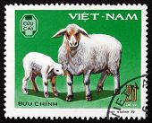 Postage Stamp Vietnam 1979 Ewe, Lamb, Domestic Animal