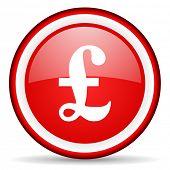 pound web icon