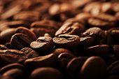 Coffee beans 3