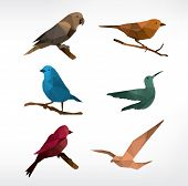 Birds icon set, low-poly style,vector illustration