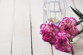 Postcard With Elegant  Carnations Flowers