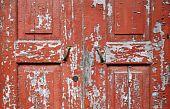 Peeling Wooden Door Close-up