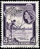 Amerindian Stamp