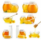 Set Of Sweet Honey In Glass Jars With Flowers And Dipper Isolated