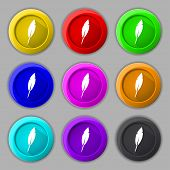 Feather Sign Icon. Retro Pen Symbol. Set Of Colored Buttons Vector