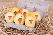 Group Of Easter Egg Chicks