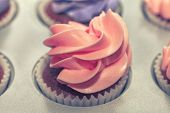 pink Cup-cakes close-up
