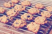 Hand Made Oatmeal Cookies In A Vintage Style