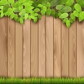 picture of wooden fence  - Wooden fence grass and tree branch  - JPG