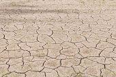 Crack On Dry Soil Background