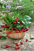 Cowberries In Wooden Bowl