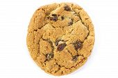 Oatmeal Raisin Cookie Over