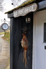 picture of barometer  - An old English Post Office now a rural cottage complete with hanging pheasant in the porchand a wall mounted barometer - JPG