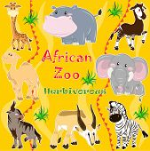 picture of kan  - A set of illustrations of herbivorous animals living in Africa - JPG