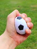 picture of stress-ball  - Hand of man squeezing a small black and white stress ball on green grass background - JPG