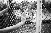 stock photo of chain link fence  - Hand holding on chain link fence black and white concept - JPG