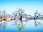 foto of crimea  - lake in Crimea spring nature in Crimea - JPG